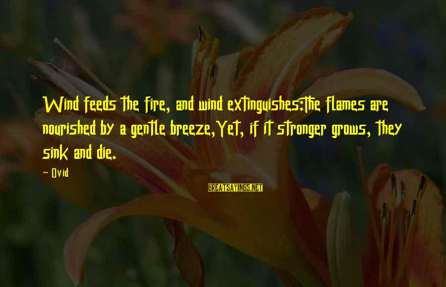 Extinguishes Sayings By Ovid: Wind feeds the fire, and wind extinguishes:The flames are nourished by a gentle breeze,Yet, if