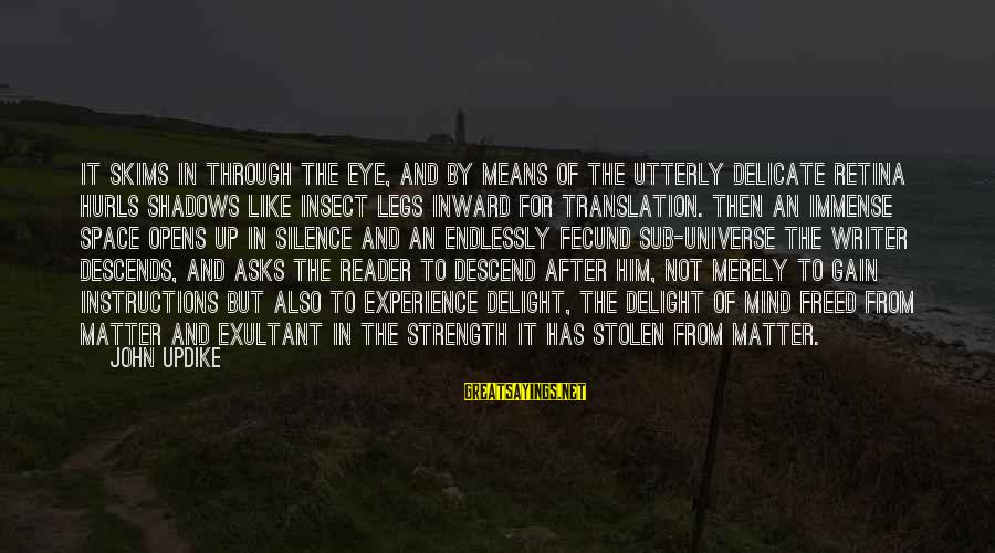 Exultant Sayings By John Updike: It skims in through the eye, and by means of the utterly delicate retina hurls