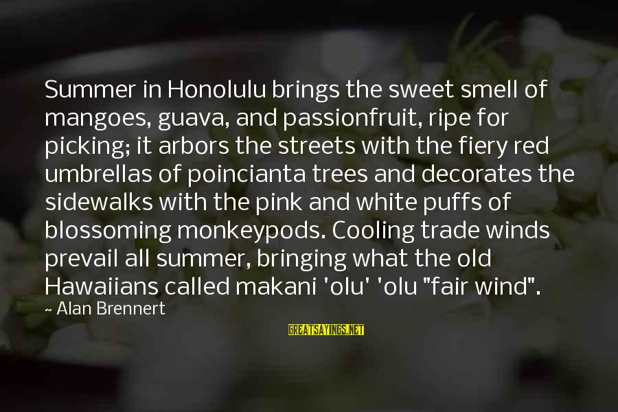 Fair Trade Sayings By Alan Brennert: Summer in Honolulu brings the sweet smell of mangoes, guava, and passionfruit, ripe for picking;