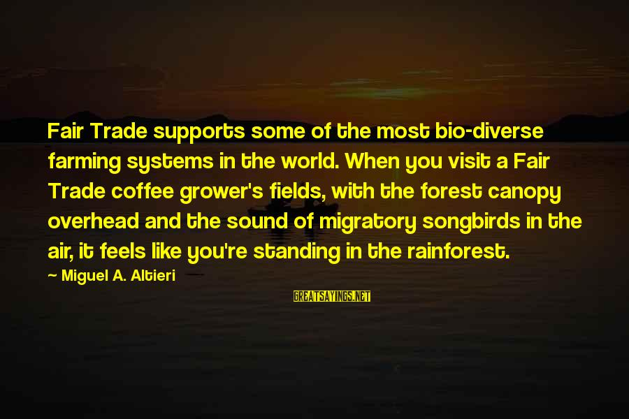 Fair Trade Sayings By Miguel A. Altieri: Fair Trade supports some of the most bio-diverse farming systems in the world. When you