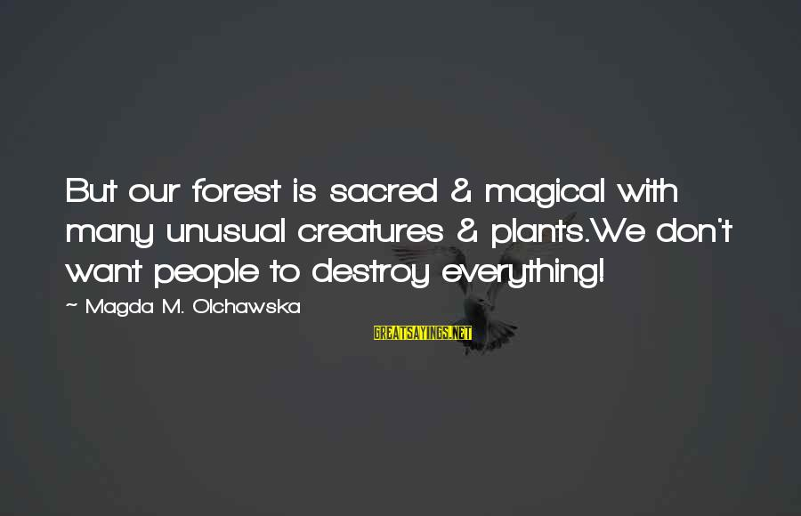 Fairies And Books Sayings By Magda M. Olchawska: But our forest is sacred & magical with many unusual creatures & plants.We don't want