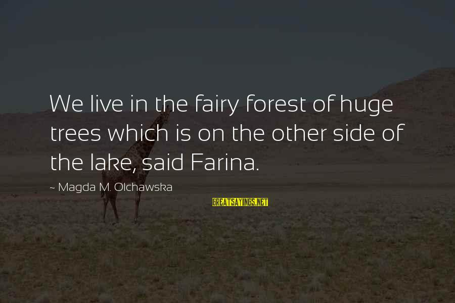 Fairies And Books Sayings By Magda M. Olchawska: We live in the fairy forest of huge trees which is on the other side