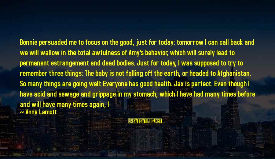 Falling Out With Family Sayings By Anne Lamott: Bonnie persuaded me to focus on the good, just for today: tomorrow I can call