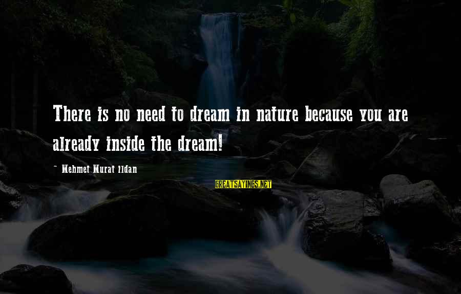 Famous Sayings By Mehmet Murat Ildan: There is no need to dream in nature because you are already inside the dream!