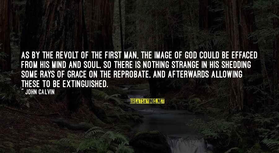 Famous Wedding Receptions Sayings By John Calvin: As by the revolt of the first man, the image of God could be effaced