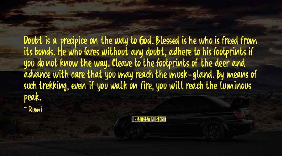 Fares Sayings By Rumi: Doubt is a precipice on the way to God. Blessed is he who is freed