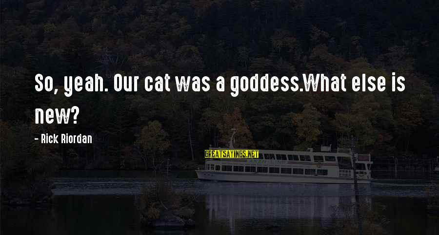 Farida Sayings By Rick Riordan: So, yeah. Our cat was a goddess.What else is new?