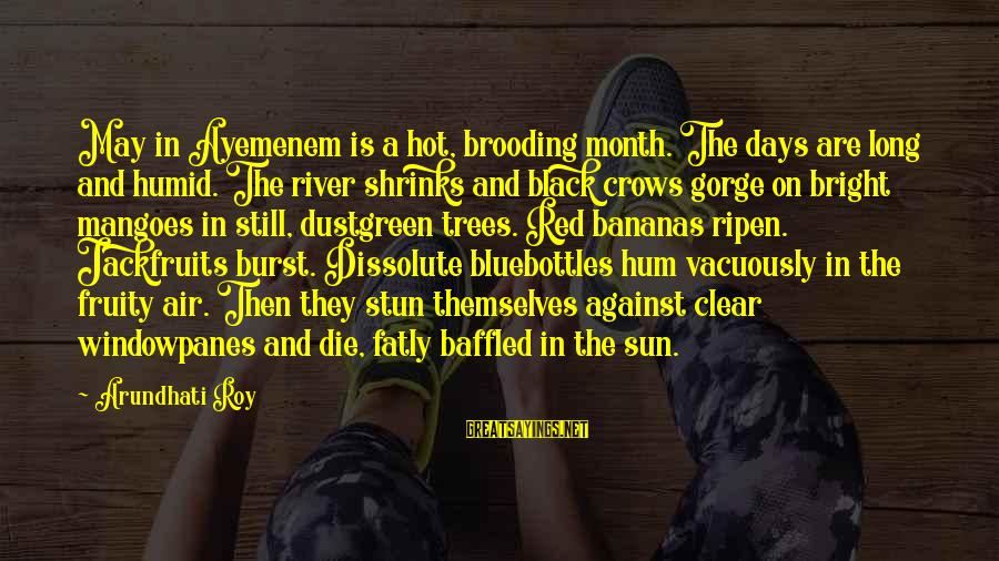 Fatly Sayings By Arundhati Roy: May in Ayemenem is a hot, brooding month. The days are long and humid. The