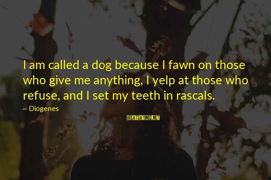 Fawn Sayings By Diogenes: I am called a dog because I fawn on those who give me anything, I