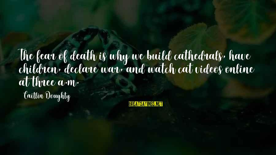Fear Of Death And Dying Sayings By Caitlin Doughty: The fear of death is why we build cathedrals, have children, declare war, and watch