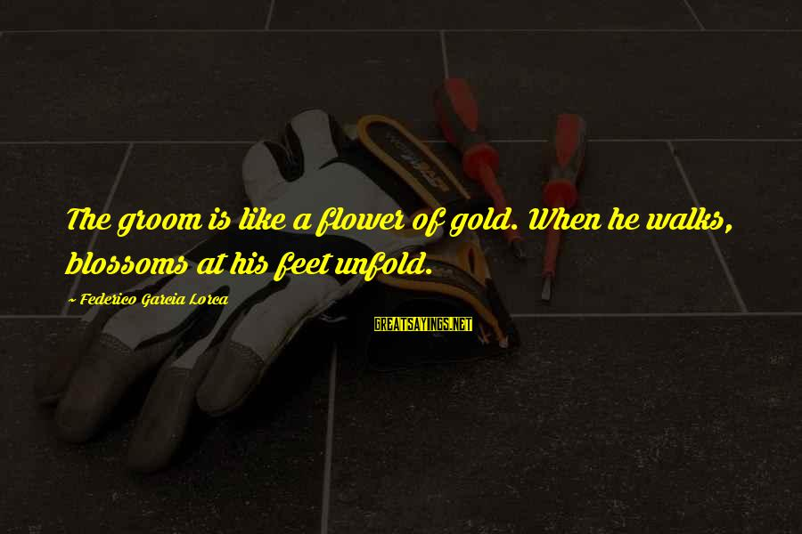 Federico Sayings By Federico Garcia Lorca: The groom is like a flower of gold. When he walks, blossoms at his feet