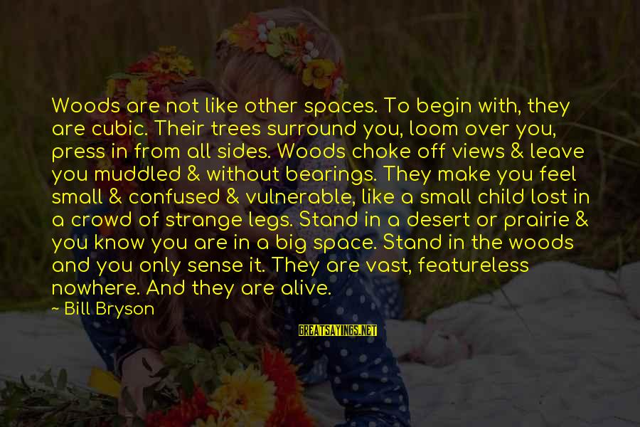 Feel Lost Without You Sayings By Bill Bryson: Woods are not like other spaces. To begin with, they are cubic. Their trees surround