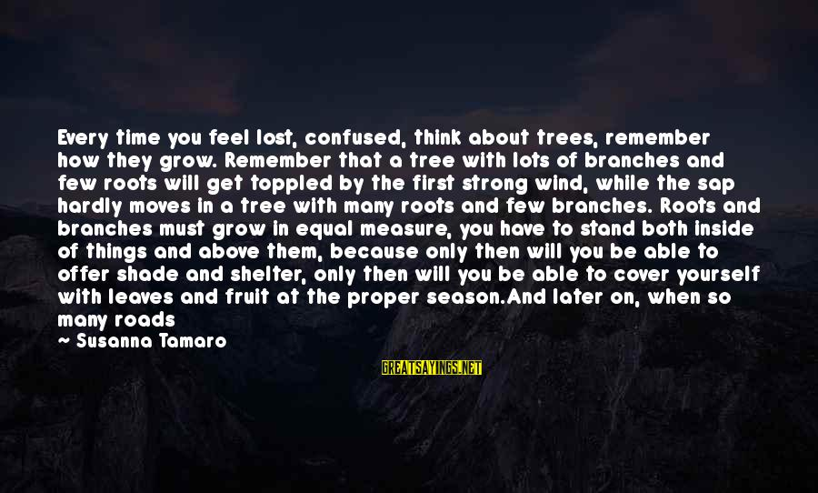 Feel So Let Down Sayings By Susanna Tamaro: Every time you feel lost, confused, think about trees, remember how they grow. Remember that