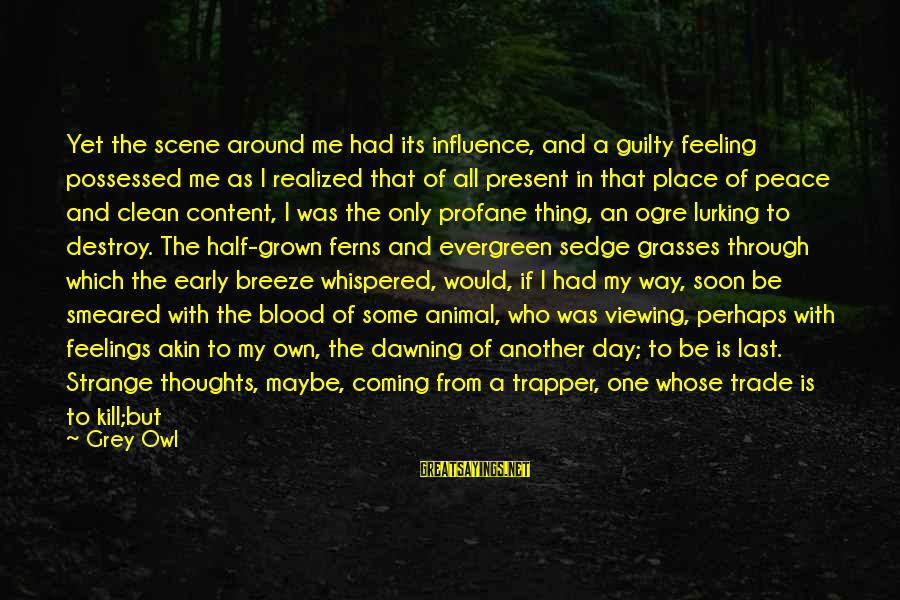 Feelings Alone Sayings By Grey Owl: Yet the scene around me had its influence, and a guilty feeling possessed me as