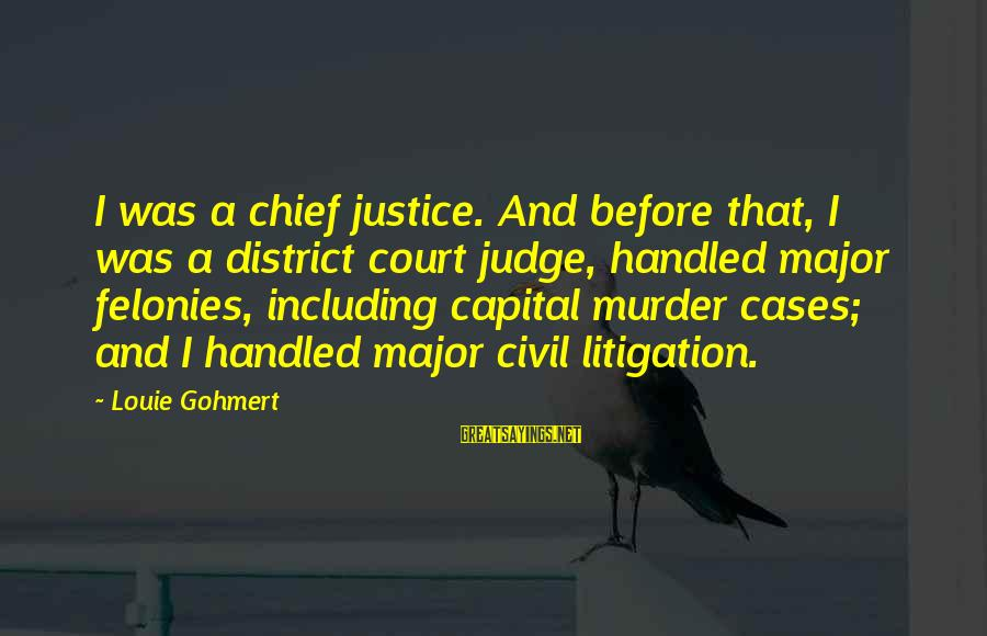 Felonies Sayings By Louie Gohmert: I was a chief justice. And before that, I was a district court judge, handled