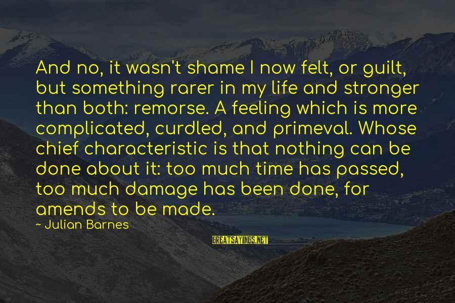Felt Nothing Sayings By Julian Barnes: And no, it wasn't shame I now felt, or guilt, but something rarer in my