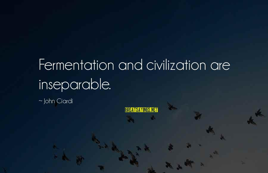 Fermentation Sayings By John Ciardi: Fermentation and civilization are inseparable.