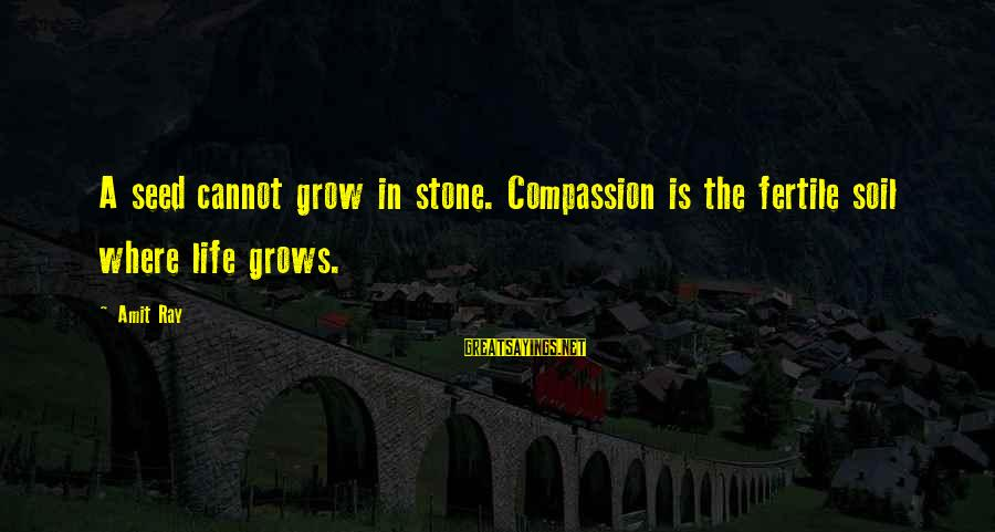 Fertile Sayings By Amit Ray: A seed cannot grow in stone. Compassion is the fertile soil where life grows.