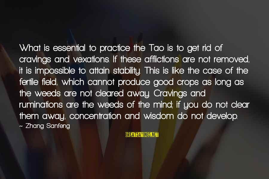 Fertile Sayings By Zhang Sanfeng: What is essential to practice the Tao is to get rid of cravings and vexations.