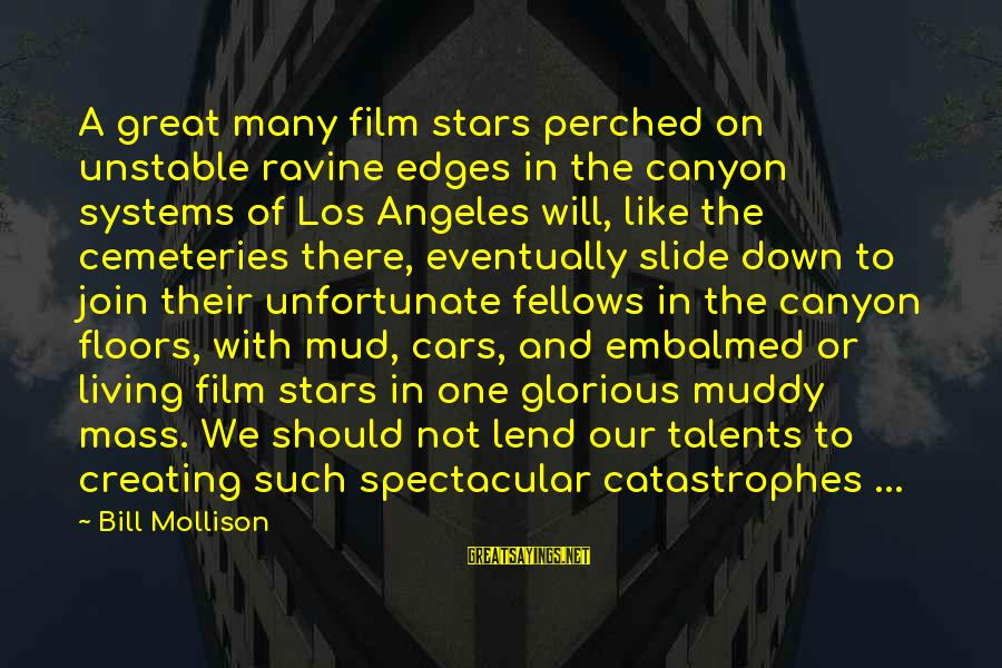 Film Stars Sayings By Bill Mollison: A great many film stars perched on unstable ravine edges in the canyon systems of