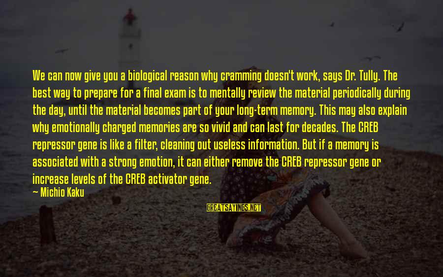 Final Exam Sayings By Michio Kaku: We can now give you a biological reason why cramming doesn't work, says Dr. Tully.