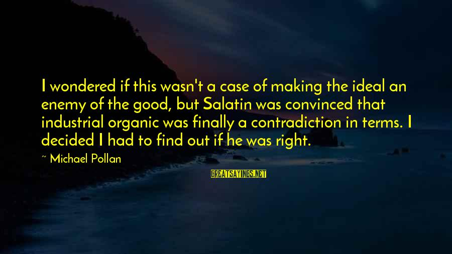 Finally Decided Sayings By Michael Pollan: I wondered if this wasn't a case of making the ideal an enemy of the