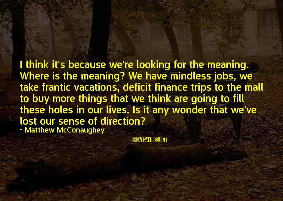 Finance Jobs Sayings By Matthew McConaughey: I think it's because we're looking for the meaning. Where is the meaning? We have