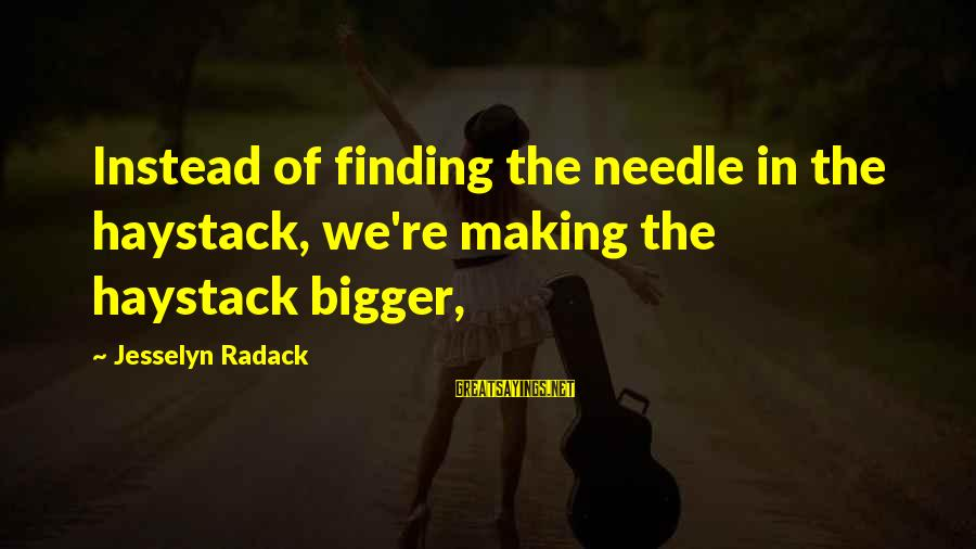 Finding A Needle In A Haystack Sayings By Jesselyn Radack: Instead of finding the needle in the haystack, we're making the haystack bigger,