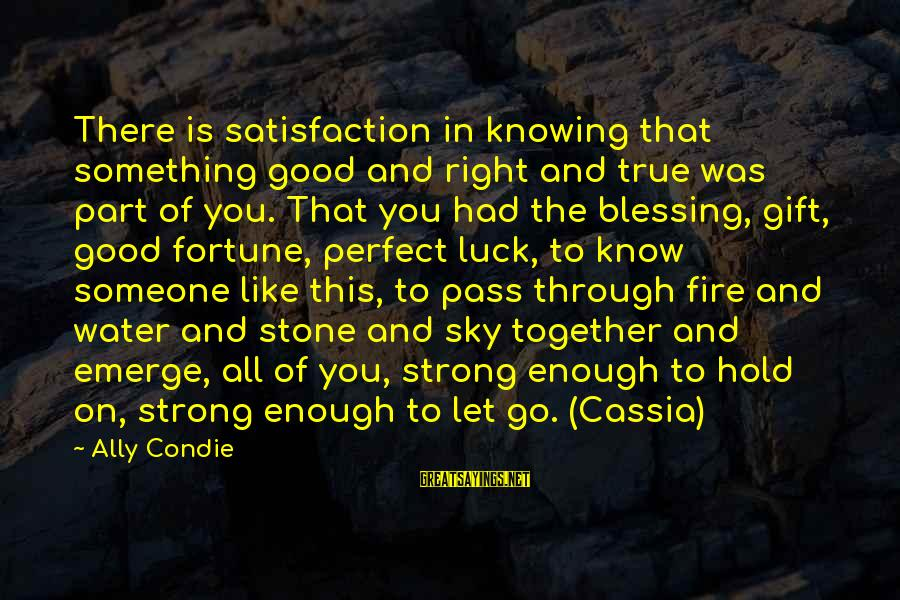 Fire In The Sky Sayings By Ally Condie: There is satisfaction in knowing that something good and right and true was part of