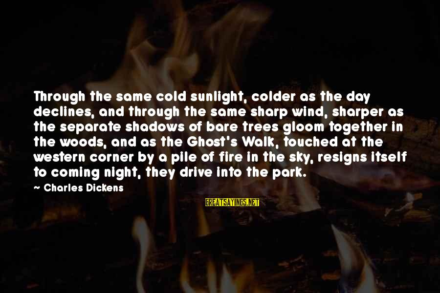 Fire In The Sky Sayings By Charles Dickens: Through the same cold sunlight, colder as the day declines, and through the same sharp