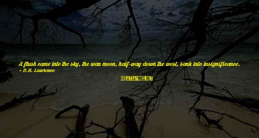 Fire In The Sky Sayings By D.H. Lawrence: A flush came into the sky, the wan moon, half-way down the west, sank into