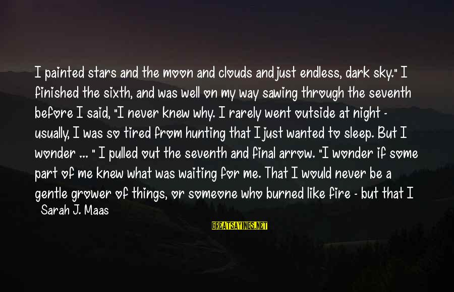 """Fire In The Sky Sayings By Sarah J. Maas: I painted stars and the moon and clouds and just endless, dark sky."""" I finished"""
