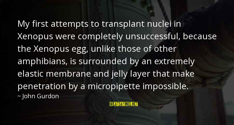 First Attempts Sayings By John Gurdon: My first attempts to transplant nuclei in Xenopus were completely unsuccessful, because the Xenopus egg,