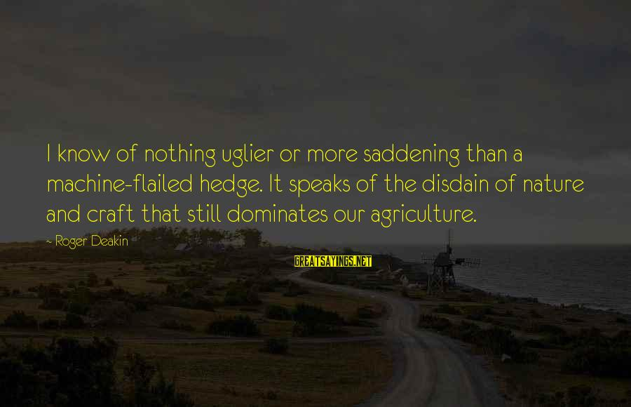 Flailed Sayings By Roger Deakin: I know of nothing uglier or more saddening than a machine-flailed hedge. It speaks of