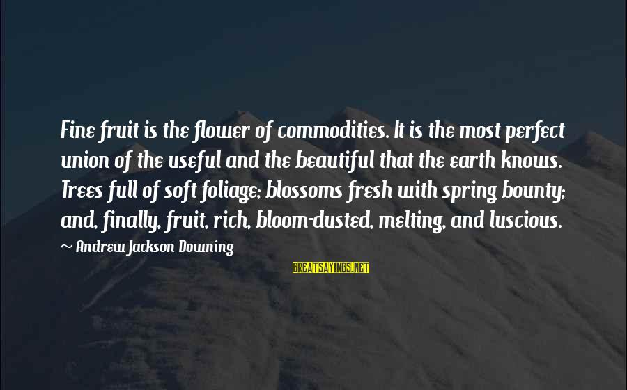 Foliage Sayings By Andrew Jackson Downing: Fine fruit is the flower of commodities. It is the most perfect union of the