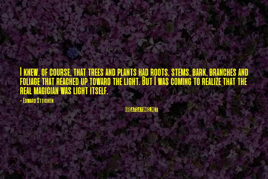 Foliage Sayings By Edward Steichen: I knew, of course, that trees and plants had roots, stems, bark, branches and foliage