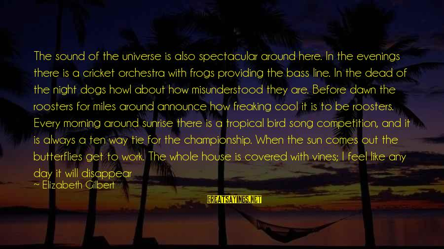 Foliage Sayings By Elizabeth Gilbert: The sound of the universe is also spectacular around here. In the evenings there is