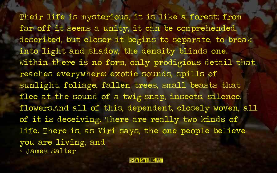 Foliage Sayings By James Salter: Their life is mysterious, it is like a forest; from far off it seems a
