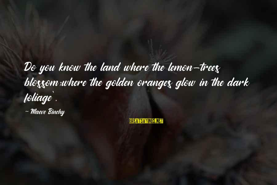 Foliage Sayings By Maeve Binchy: Do you know the land where the lemon-trees blossom;where the golden oranges glow in the