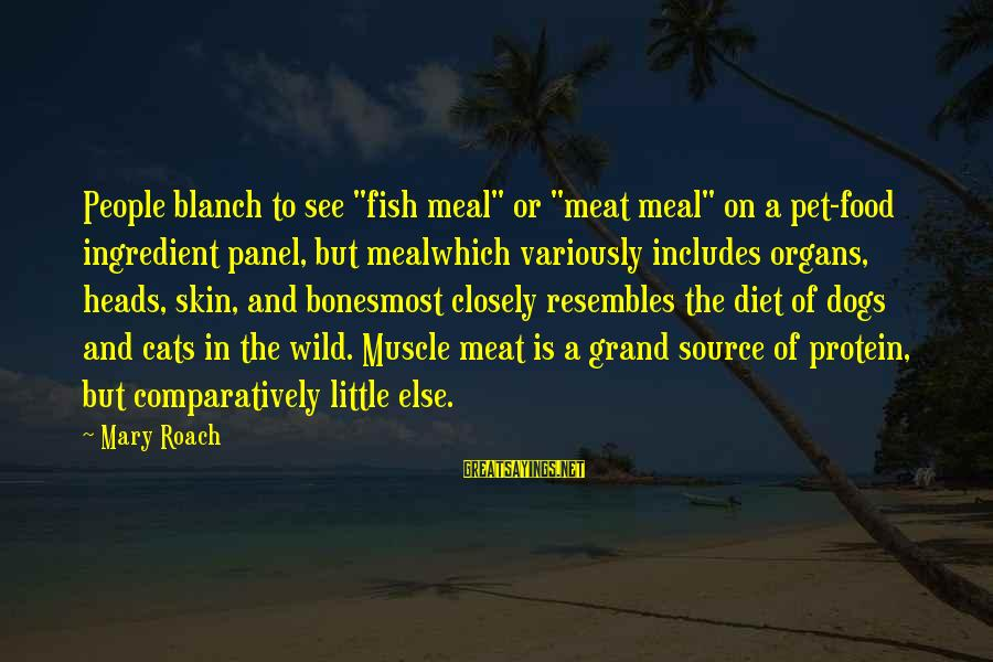 """Food And Diet Sayings By Mary Roach: People blanch to see """"fish meal"""" or """"meat meal"""" on a pet-food ingredient panel, but"""