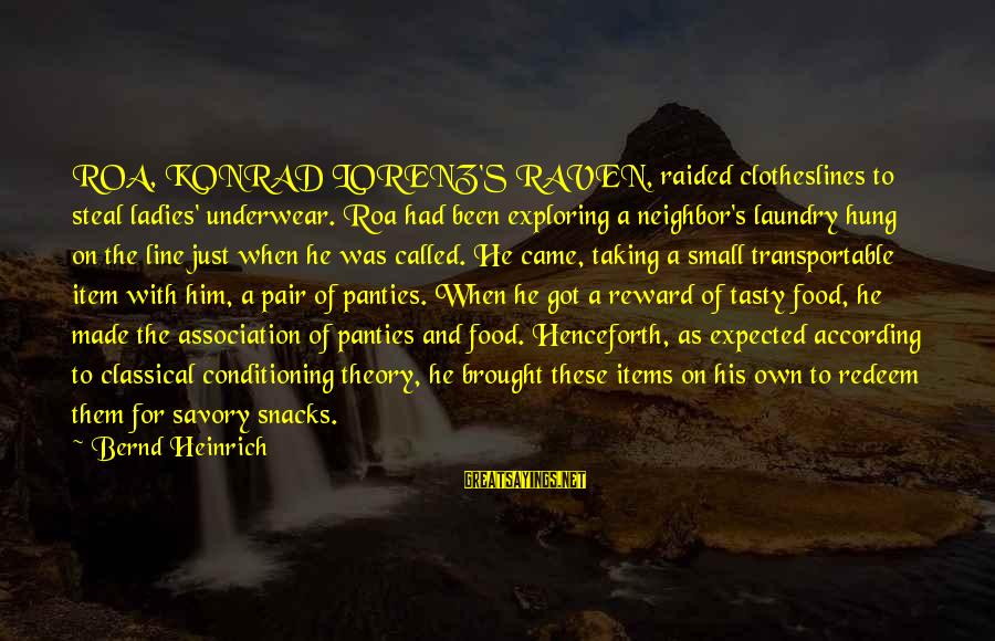 Food Items Sayings By Bernd Heinrich: ROA, KONRAD LORENZ'S RAVEN, raided clotheslines to steal ladies' underwear. Roa had been exploring a