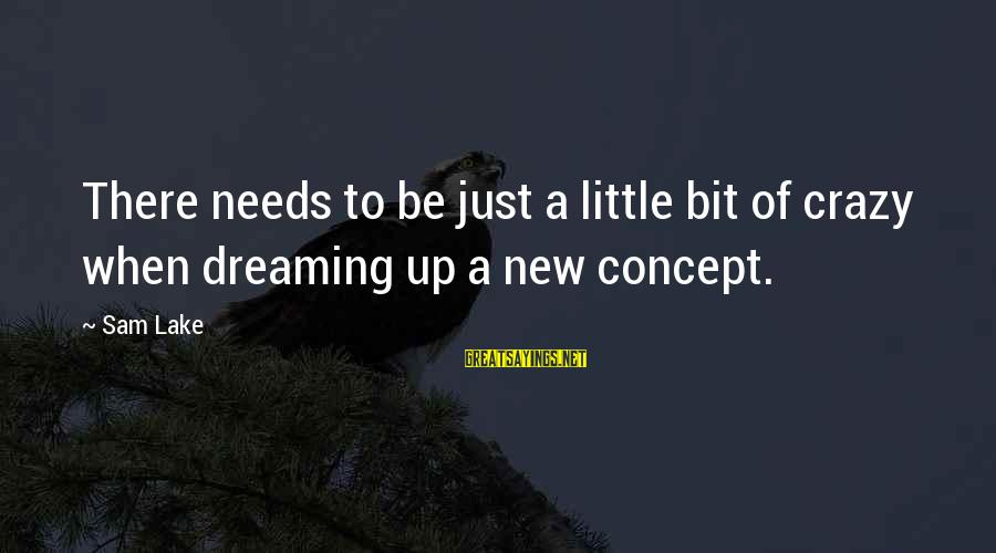 Fracton Sayings By Sam Lake: There needs to be just a little bit of crazy when dreaming up a new