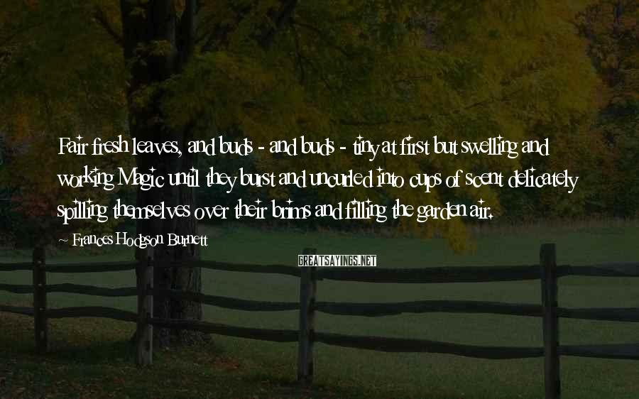Frances Hodgson Burnett Sayings: Fair fresh leaves, and buds - and buds - tiny at first but swelling and