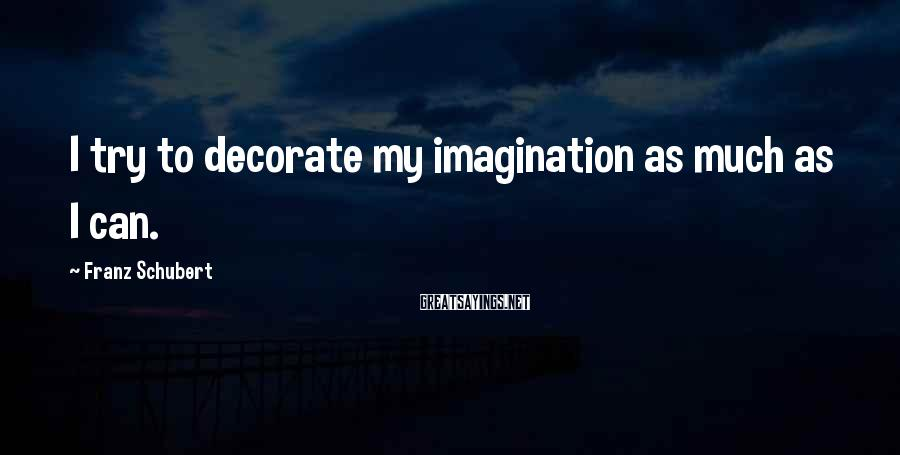 Franz Schubert Sayings: I try to decorate my imagination as much as I can.