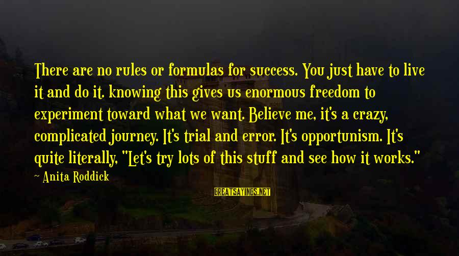 Freedom Experiment Sayings By Anita Roddick: There are no rules or formulas for success. You just have to live it and