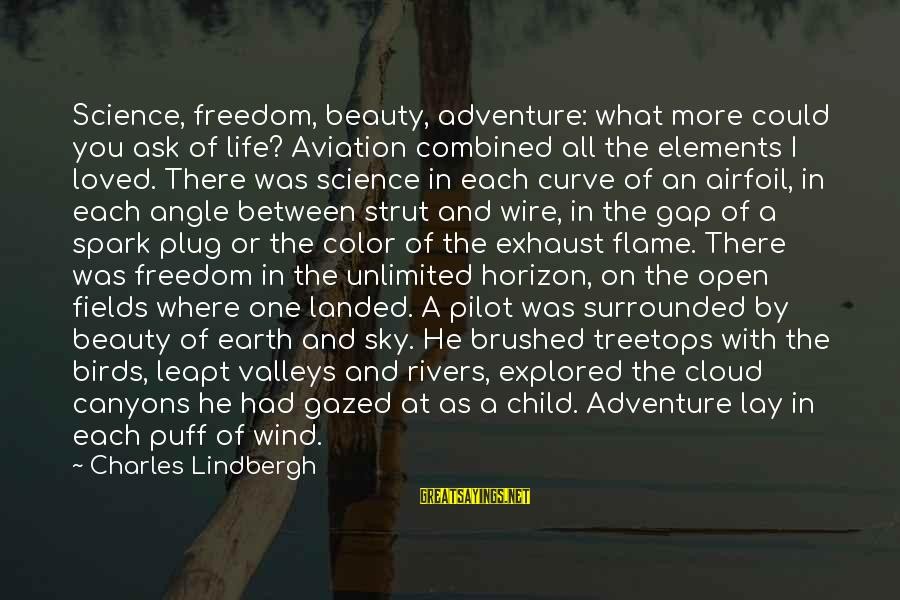 Freedom Life Sayings By Charles Lindbergh: Science, freedom, beauty, adventure: what more could you ask of life? Aviation combined all the