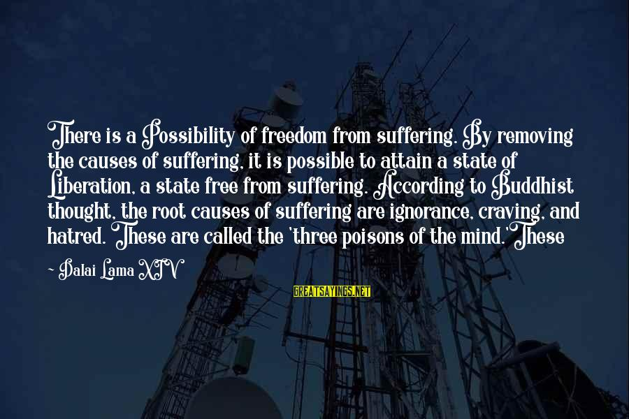 Freedom State Of Mind Sayings By Dalai Lama XIV: There is a Possibility of freedom from suffering. By removing the causes of suffering, it