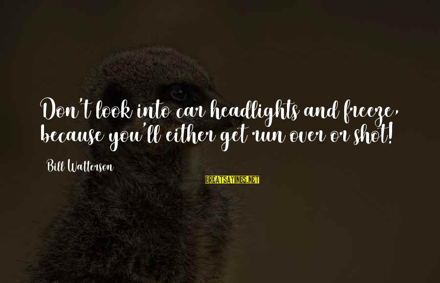 Freeze Sayings By Bill Watterson: Don't look into car headlights and freeze, because you'll either get run over or shot!