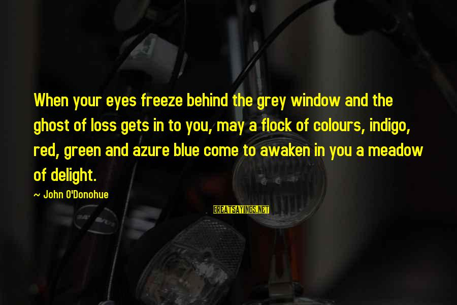 Freeze Sayings By John O'Donohue: When your eyes freeze behind the grey window and the ghost of loss gets in