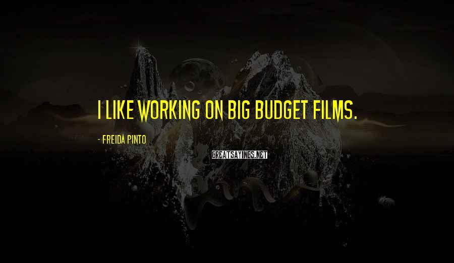 Freida Pinto Sayings: I like working on big budget films.